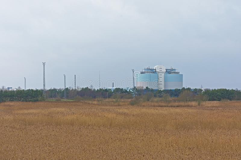 Reed field with Tallinn sewage treatment plant in the distance stock photo