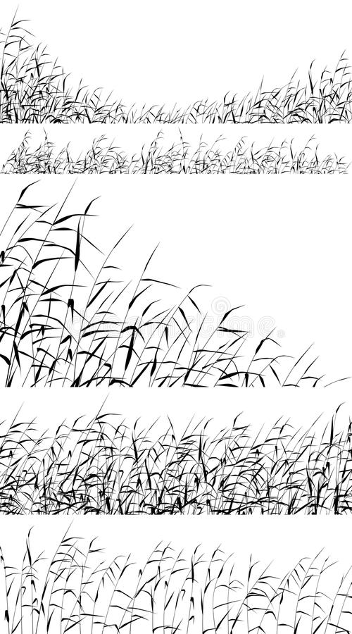 Reed foregrounds. Set of editable vector silhouettes of reed fringes