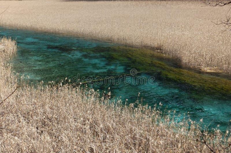 Reed Lake in Hemelse Jiuzhaigou royalty-vrije stock foto's