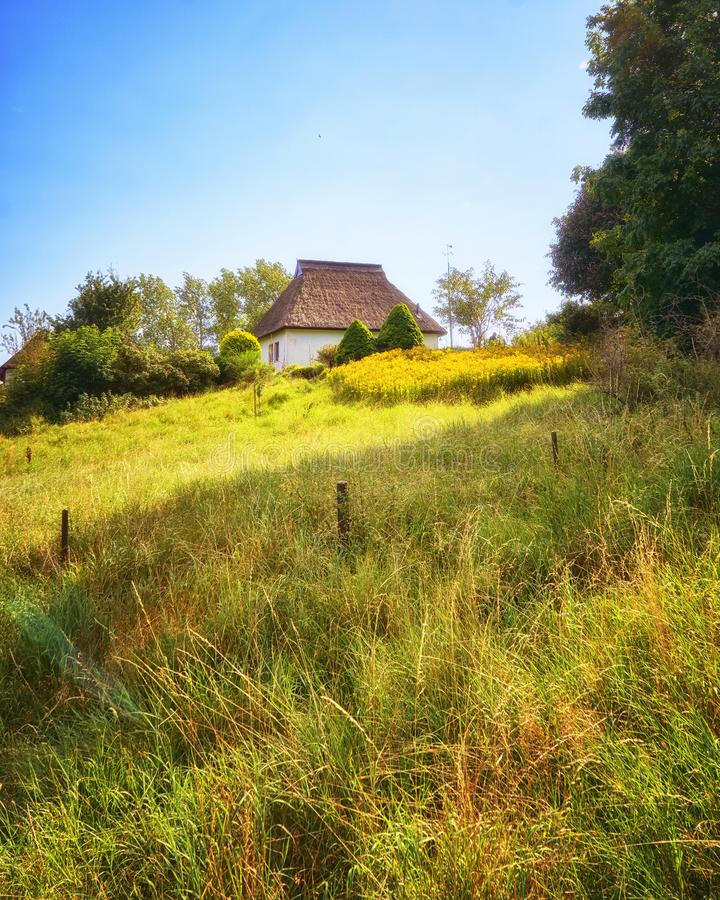 Reed roof house in a meadow on the island Hiddensee. Germany, Mecklenburg-Vorpommern. Cottage, thatch, grass, property, baltic, brokers, coast, landscape stock image