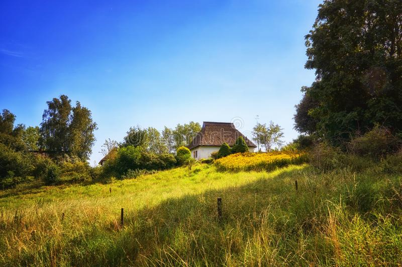 Reed roof house in a meadow with trees on the island Hiddensee. Germany, Mecklenburg-Vorpommern. Cottage, thatch, grass, property, baltic, brokers, coast royalty free stock image
