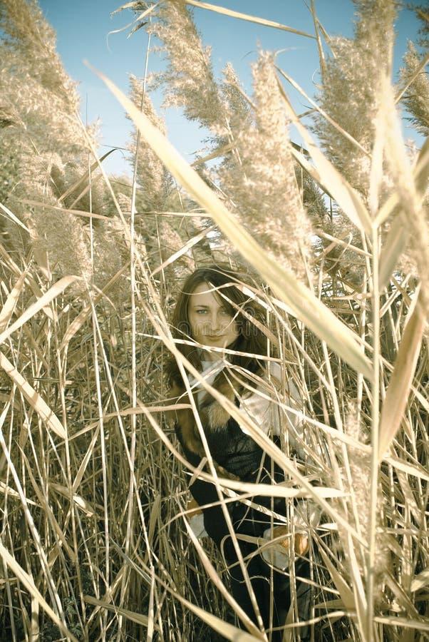 reeds детеныши женщины стоковое фото