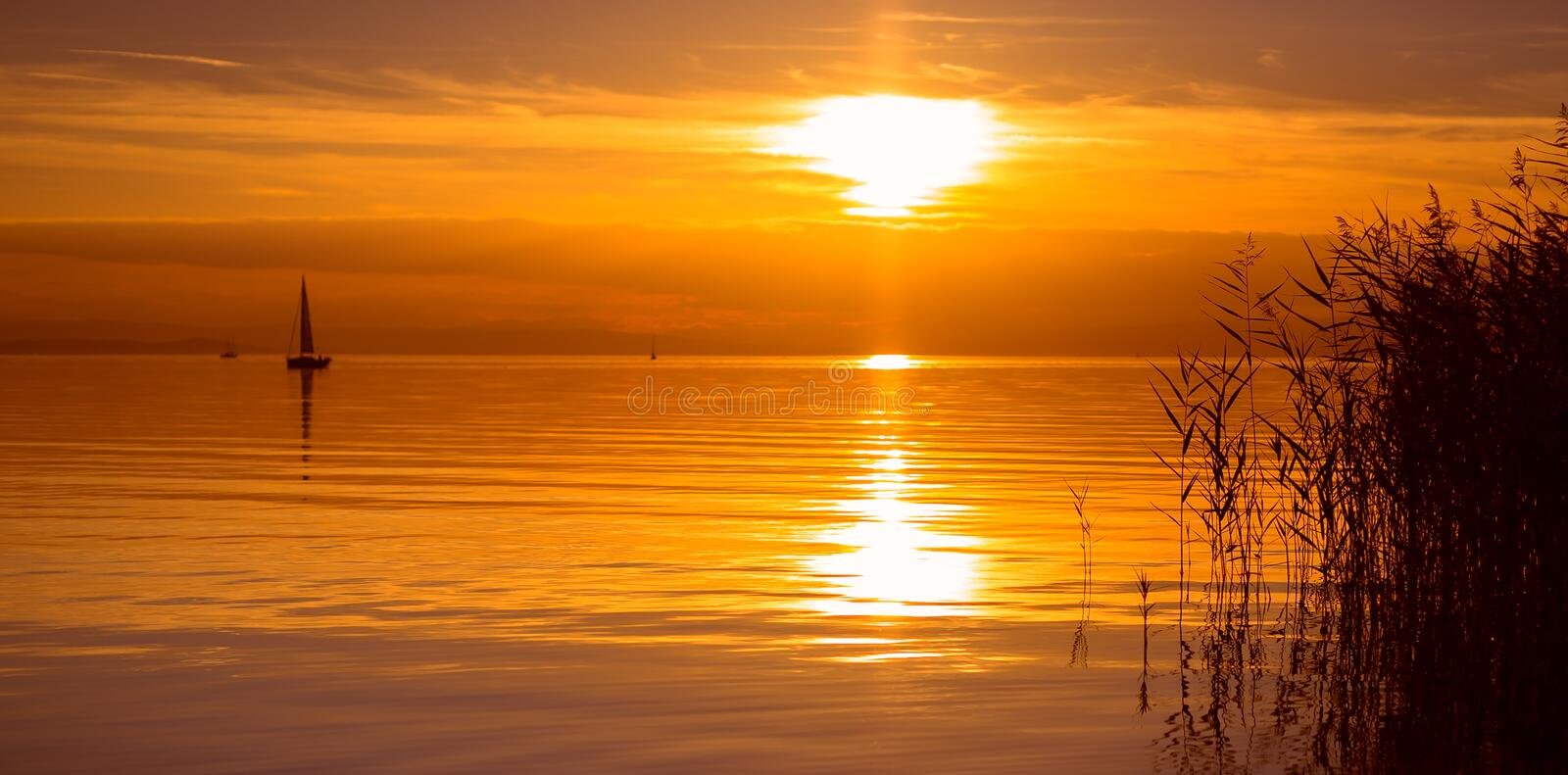 Reeds and calm lake. Level with boat at sunset royalty free stock photography