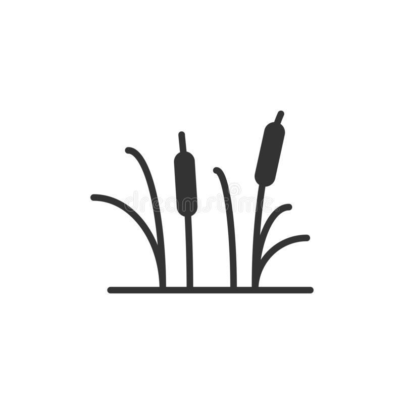 Reeds grass icon in flat style. Bulrush swamp vector illustration on white isolated background. Reed leaf business concept. royalty free illustration