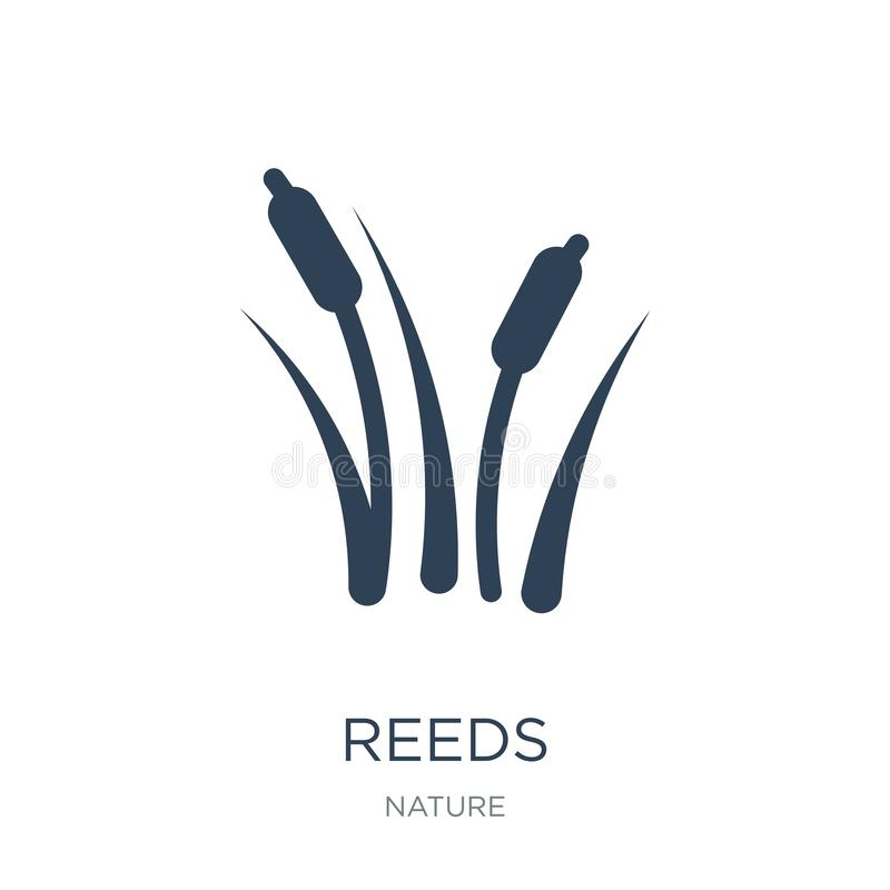 Reeds icon in trendy design style. reeds icon isolated on white background. reeds vector icon simple and modern flat symbol for. Web site, mobile, logo, app, UI royalty free illustration