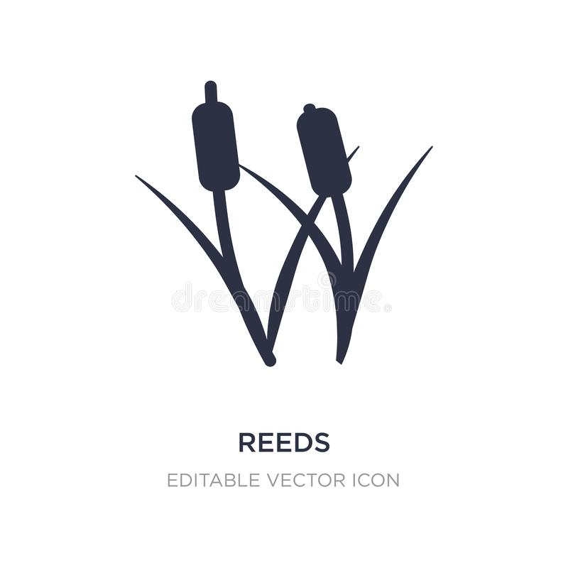 reeds icon on white background. Simple element illustration from Nature concept stock illustration