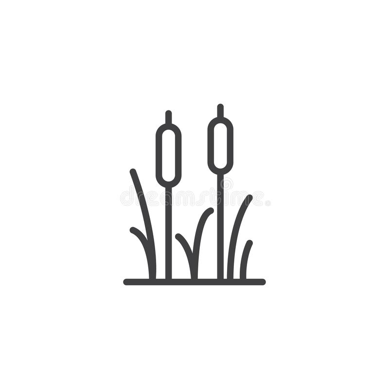Reeds plant outline icon vector illustration