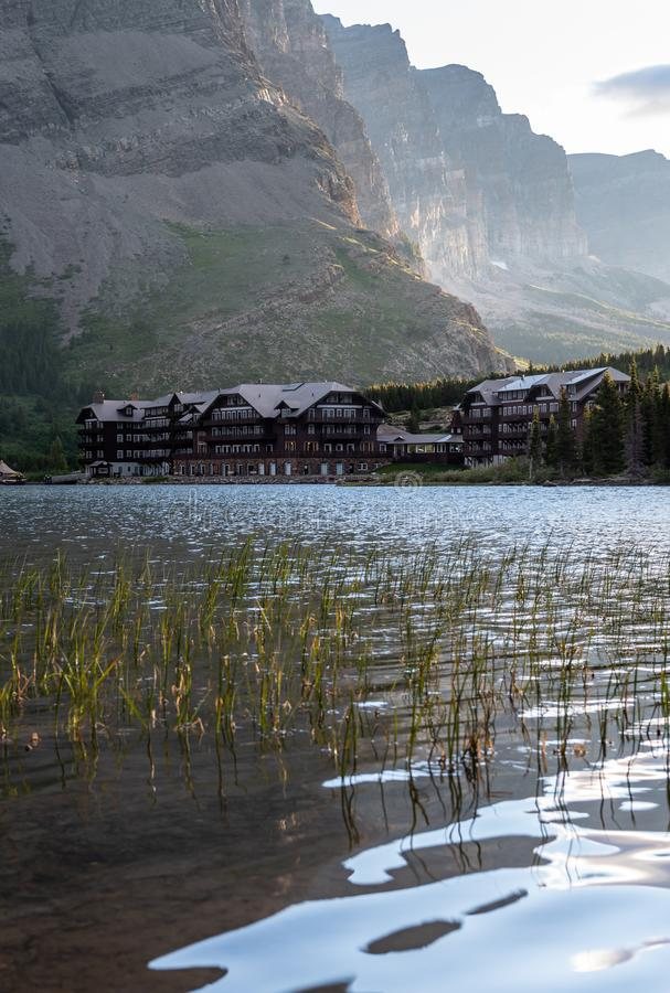 Reeds Stand At the Edit of Swiftcurrent Lake Near Many Glacier Hotel royalty free stock photography