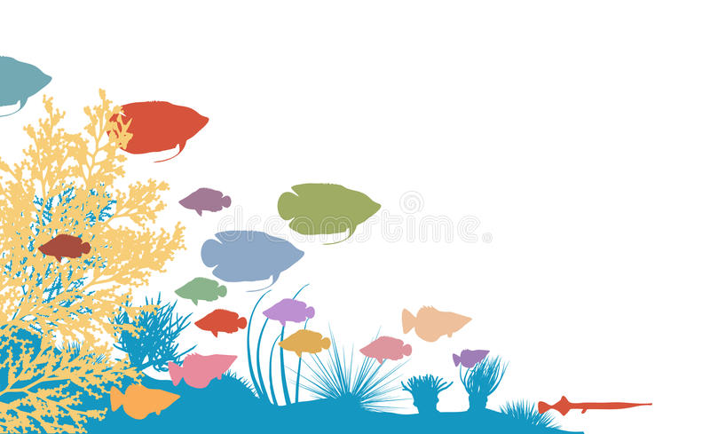 Reef. Vector illustration of colorful fish and coral silhouettes stock illustration