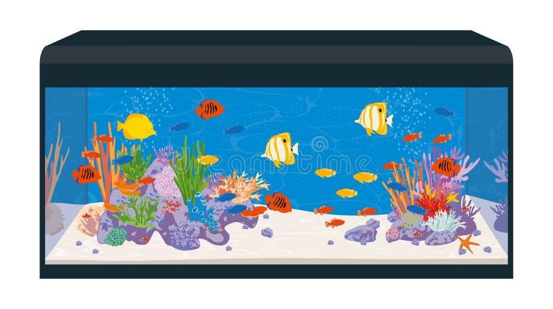 Reef aquarium stock illustration