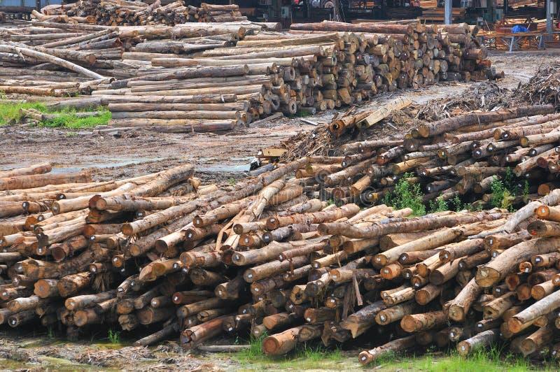 Reeks 1 van de Zaagmolen van het hout stock foto's