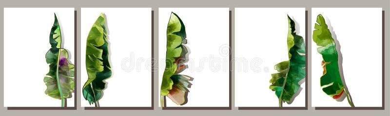 Reeks achtergronden met palmbladenwaterverf, het vector trekken op witte achtergrond vector illustratie