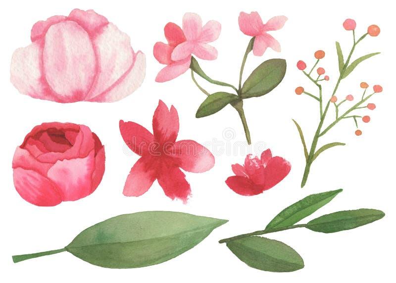 Reeks bloemen, bladeren en takkenelementen royalty-vrije illustratie