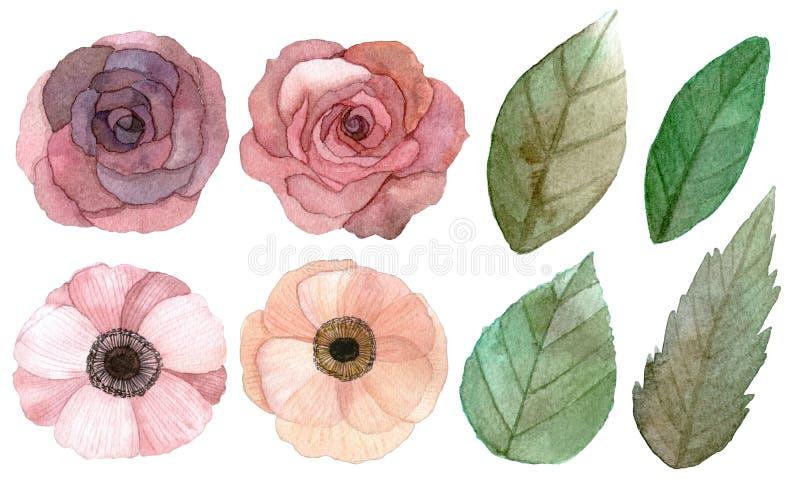 Reeks bloemen en bladeren stock illustratie