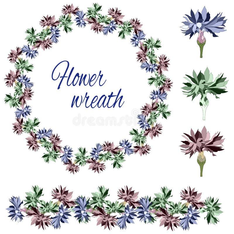 Reeks bloemen en knoppen op een witte achtergrond Bloemkroon van korenbloemen Vector borstel stock illustratie