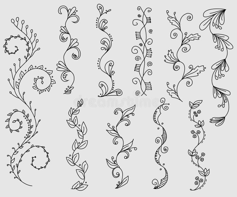 Reeks bloemenwijnstokgrenzen royalty-vrije illustratie