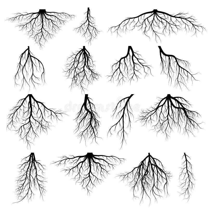 Reeks boomwortels stock illustratie