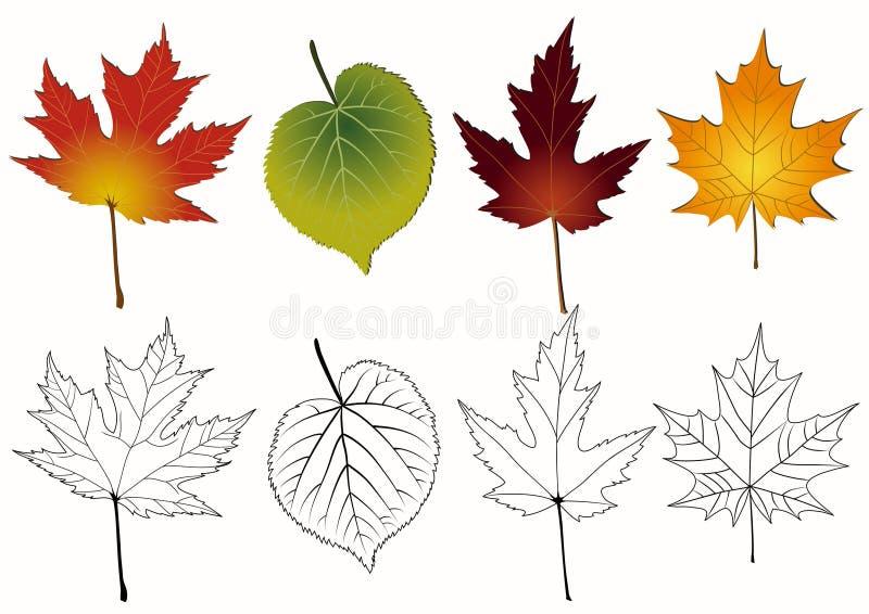 Reeks de herfstbladeren. vector illustratie