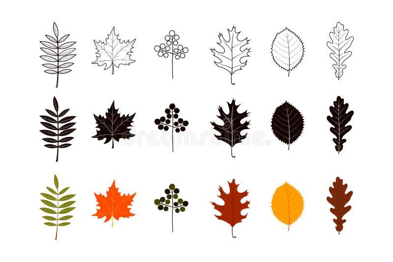 Reeks de herfstbladeren in kleur, silhouetten en het ontwerp van de lijnkunst stock illustratie