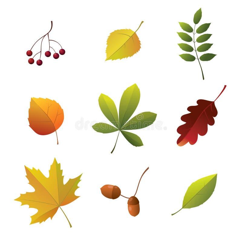 Reeks de herfstdetails stock illustratie