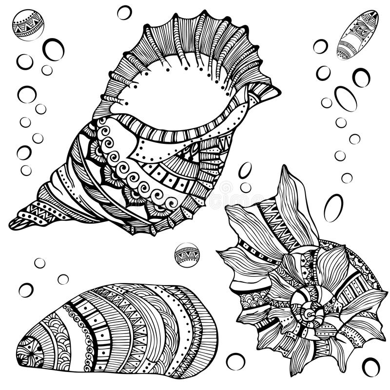 Reeks decoratieve zeeschelpen op witte achtergrond vector illustratie