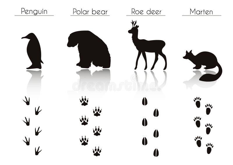 Reeks dier en vogelslepen met naam Vectorreeks van Zwarte Arct vector illustratie