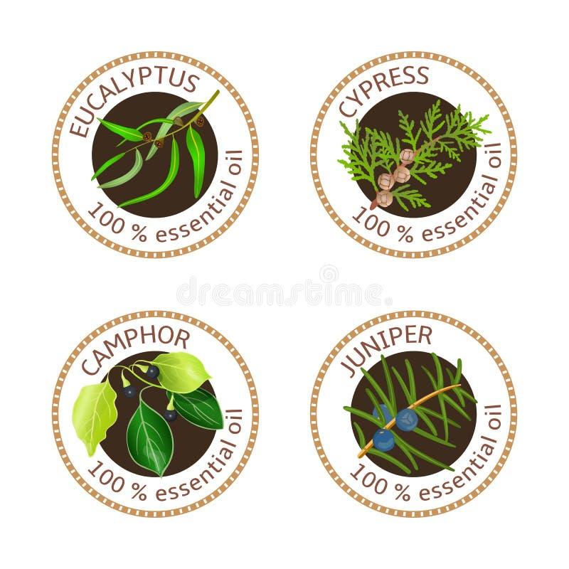 Reeks etherische oliënetiketten Eucalyptus, cipres, kamferboom, jeneverbes stock illustratie