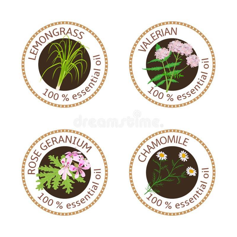 Reeks etherische oliënetiketten Rose Geranium, citroengras, Kamille, Valeriaankruid vector illustratie