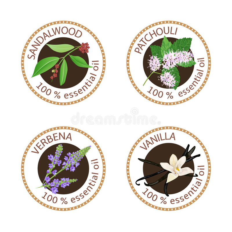 Reeks etherische oliënetiketten Sandelhout, patchoeli, ijzerkruid, vanille royalty-vrije illustratie