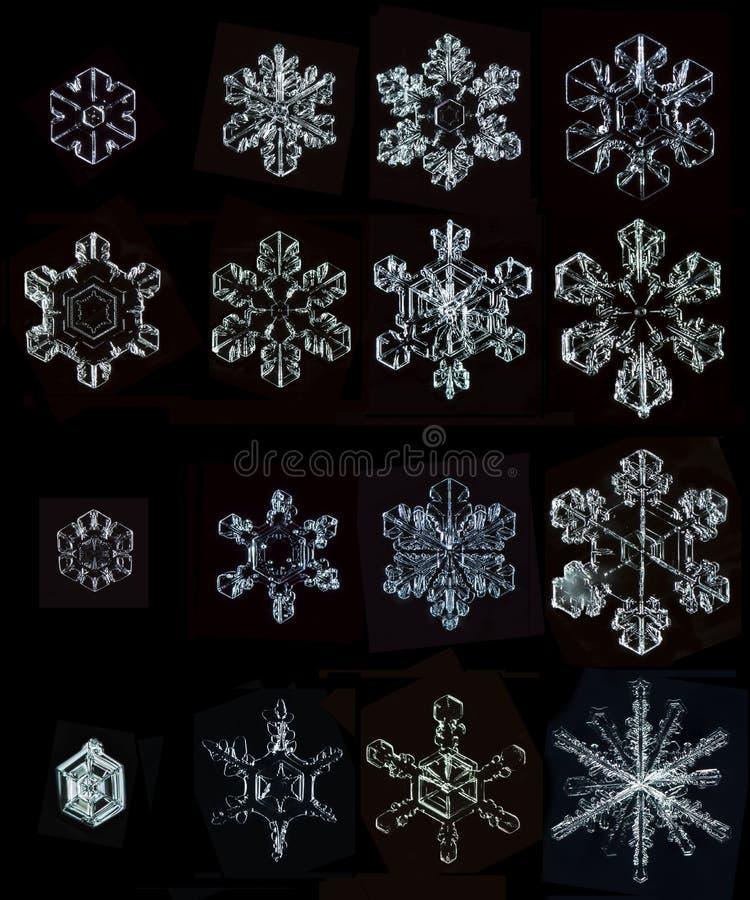 Reeks foto's natuurlijke sneeuwvlokken royalty-vrije stock foto