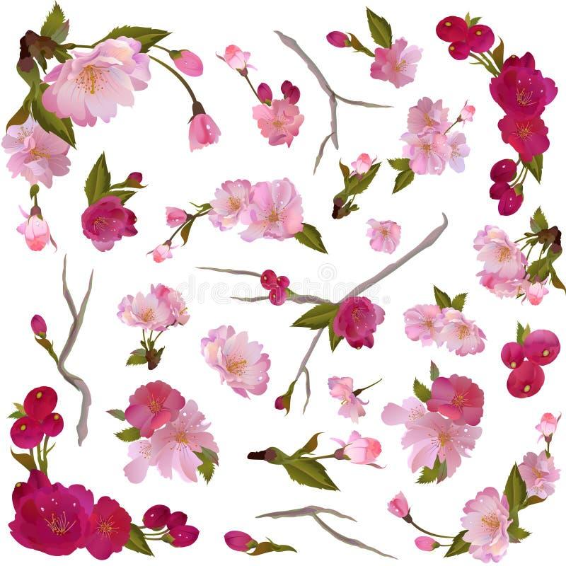 Reeks geïsoleerde de lentebloemen en takken vector illustratie