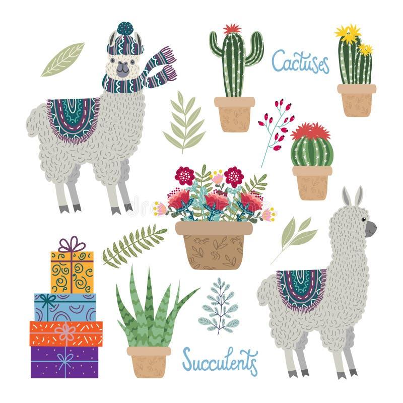 Reeks geïsoleerde Leuke lama's met bloemen, cactussen en succulents op een witte achtergrond stock fotografie