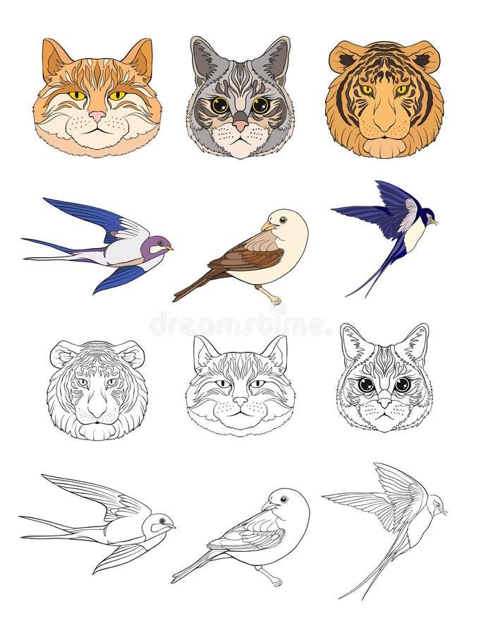 Reeks gekleurde en overzichtskatten, tijger en vogels vector illustratie