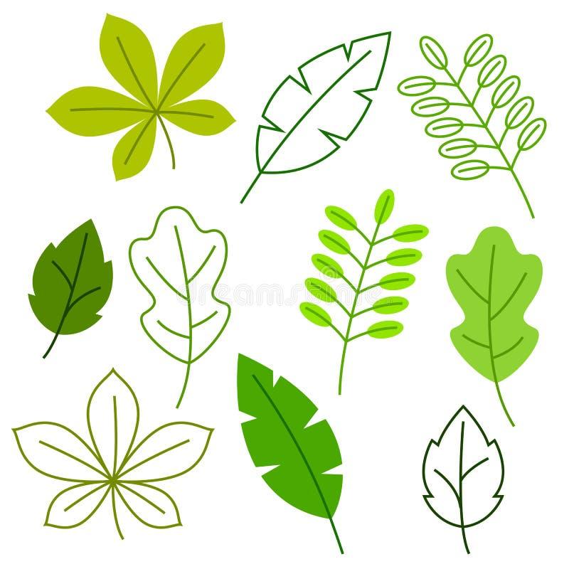 Reeks gestileerde groene bladeren De lente of de zomergebladerte stock illustratie