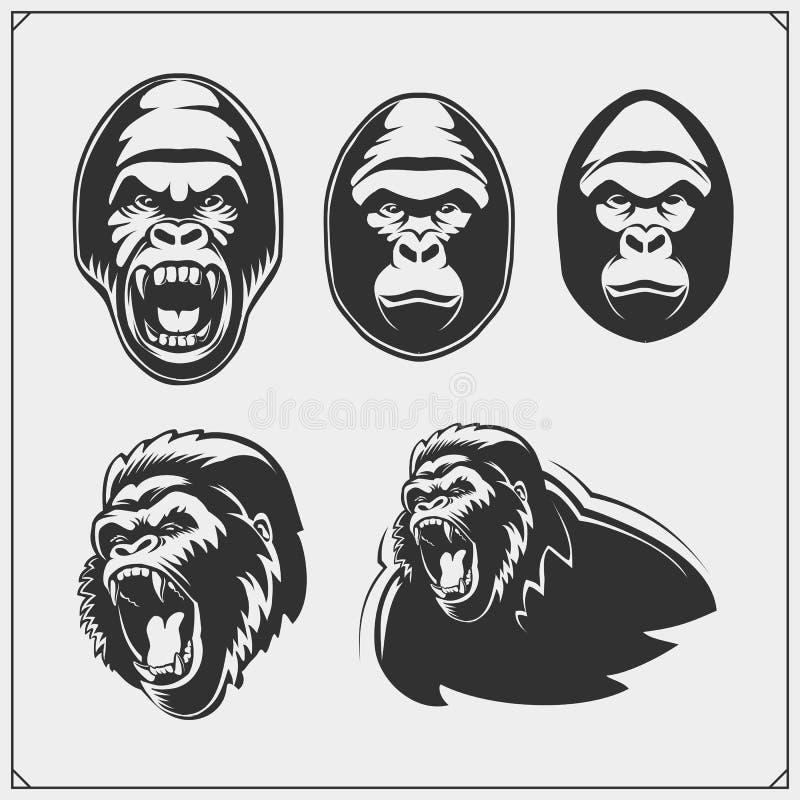 Reeks gorillahoofden Vector illustratie stock illustratie