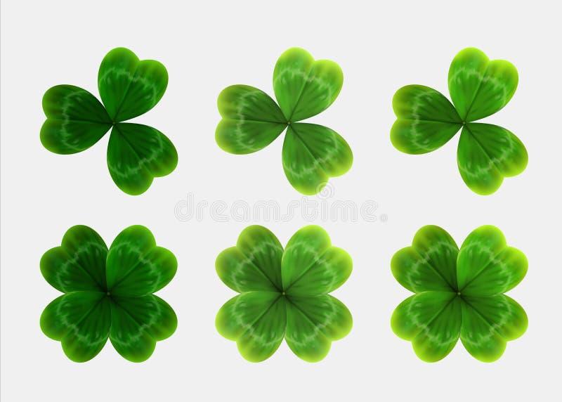 Reeks groene bladeren van klaver Realistische vector stock illustratie
