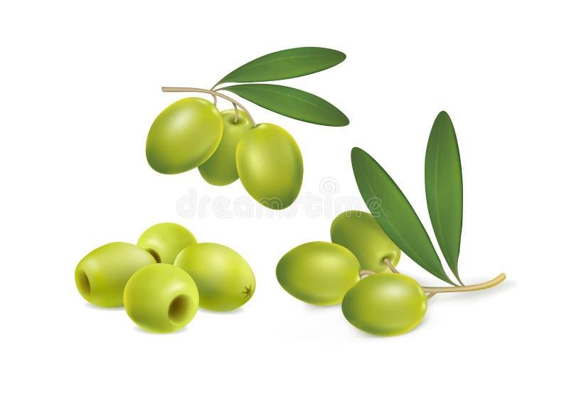 Reeks groene olijven op witte achtergrond stock illustratie
