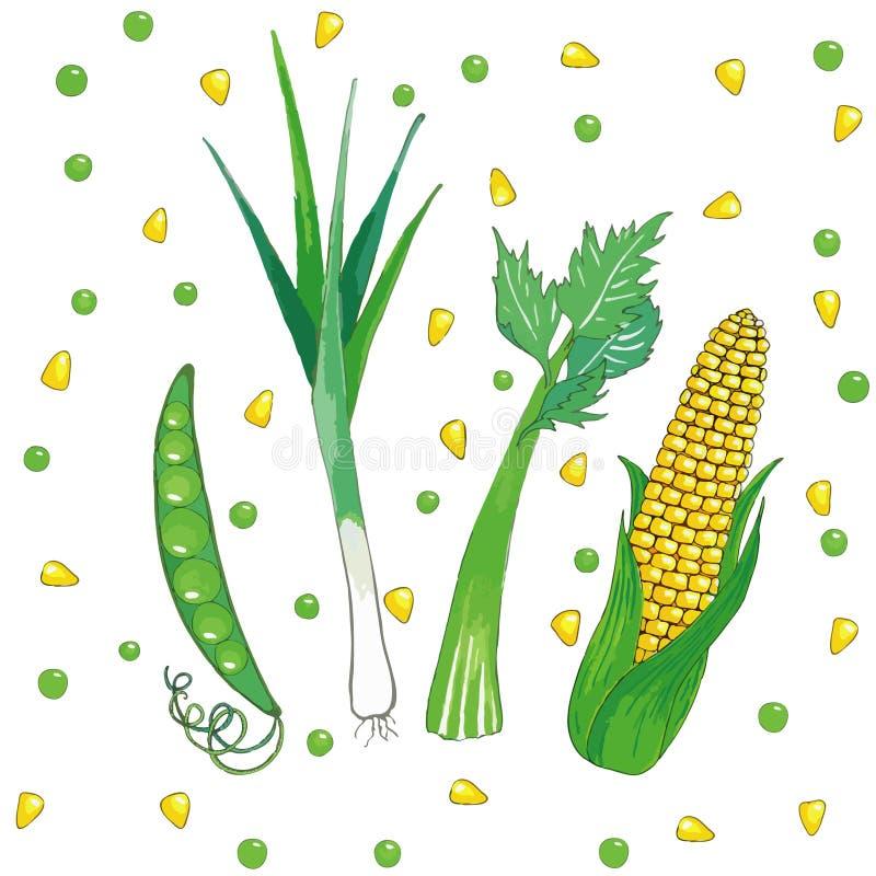 Reeks groenten vector illustratie