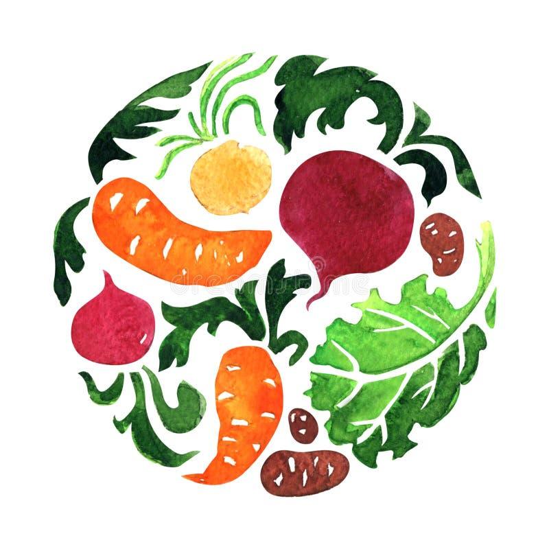 Reeks groenten in cirkel, wortel, biet, aardappel, saladeblad Natuurvoeding, gezond vegetarisch voedselconcept banner stock fotografie