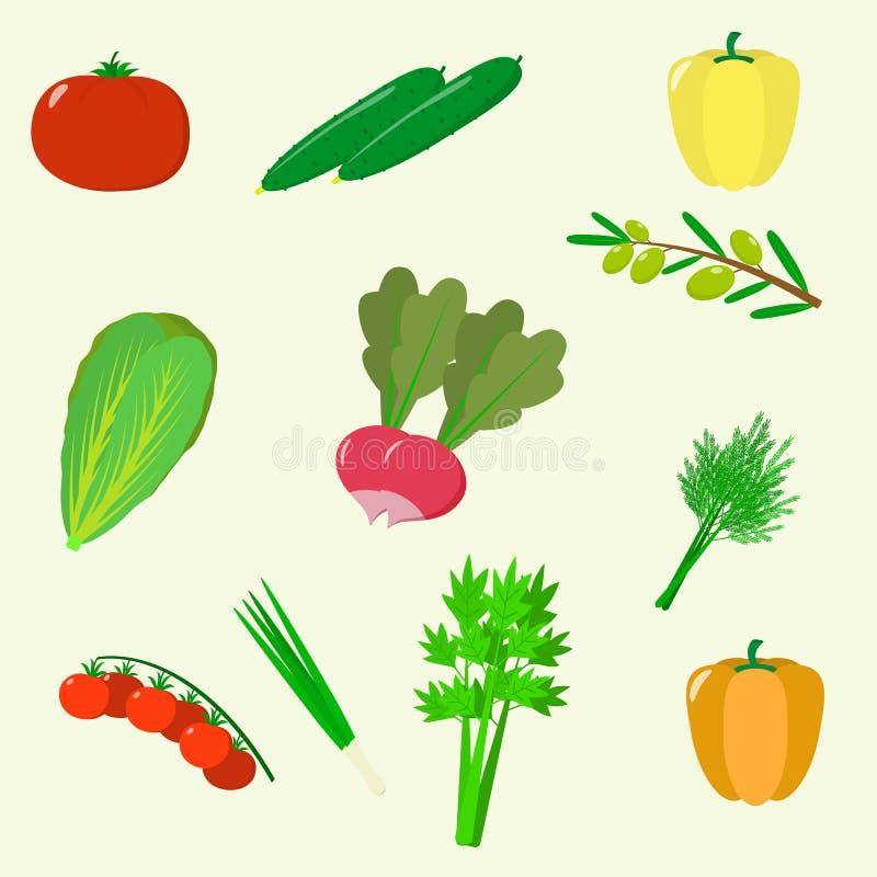 Reeks groenten Organisch vegetarisch gezond die voedsel op witte achtergrond wordt geïsoleerd Vector stock illustratie