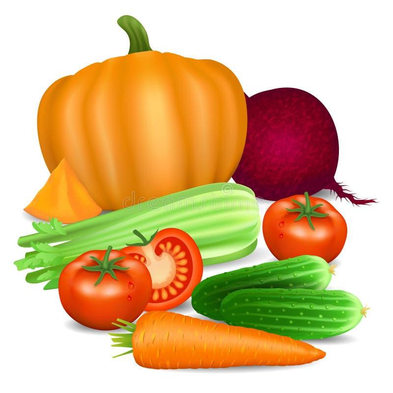 Reeks groenten Tomaat, wortel, pompoen, komkommer, selderie vector illustratie
