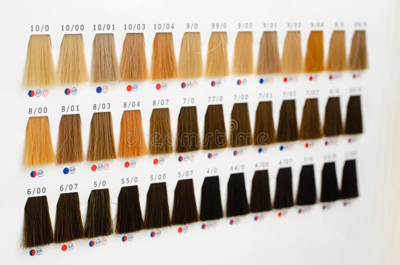 Reeks haarmonsterpalet Tinten voor verschillende tinten Haarkleurstof stock afbeelding