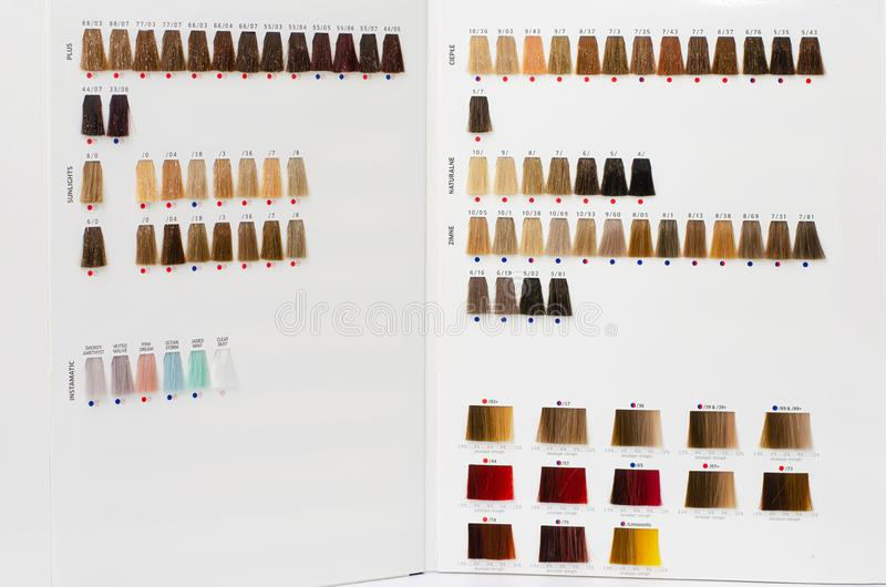 Reeks haarmonsterpalet Tinten voor verschillende tinten Haarkleurstof-concept royalty-vrije stock foto