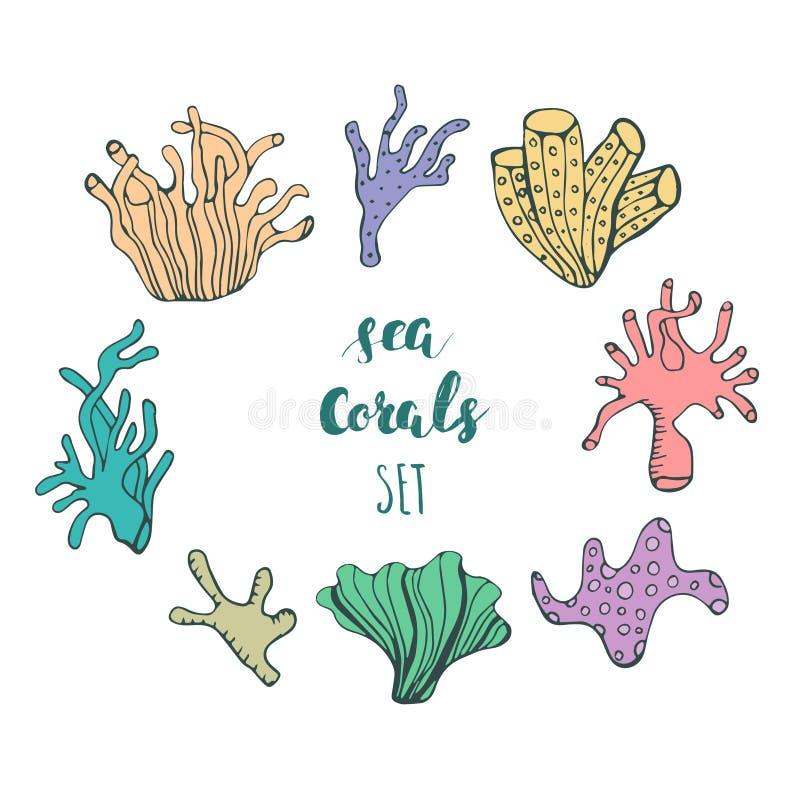 Reeks hand getrokken onderwaterkoraalrifelementen Vectorontwerp voor uw overzeese het levensillustratie Blauwe, roze, groene, ora stock illustratie