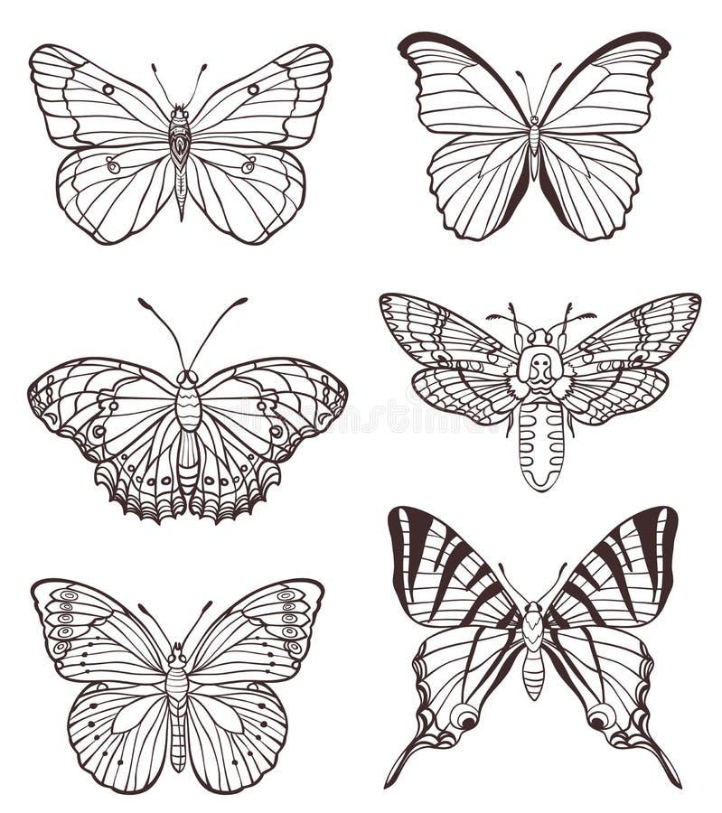 Reeks hand getrokken vlinders vector illustratie