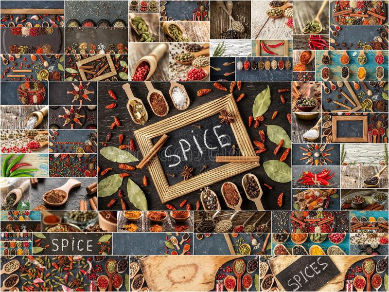 Reeks Indische kruiden, collage van specerijen stock foto