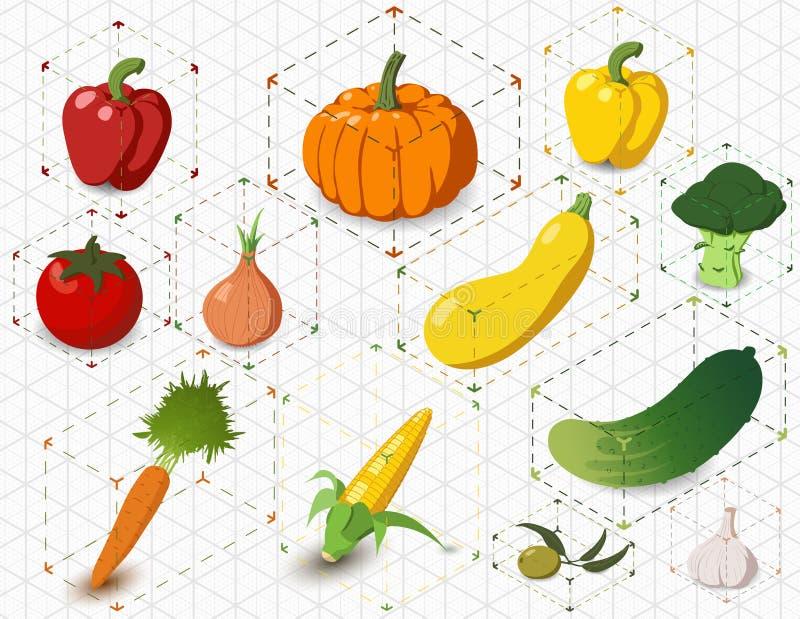 Reeks isometrische groenten royalty-vrije stock afbeeldingen