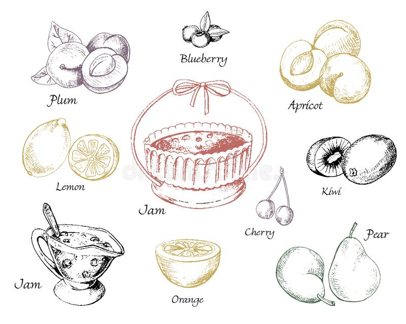 Reeks jam en vruchten stock illustratie