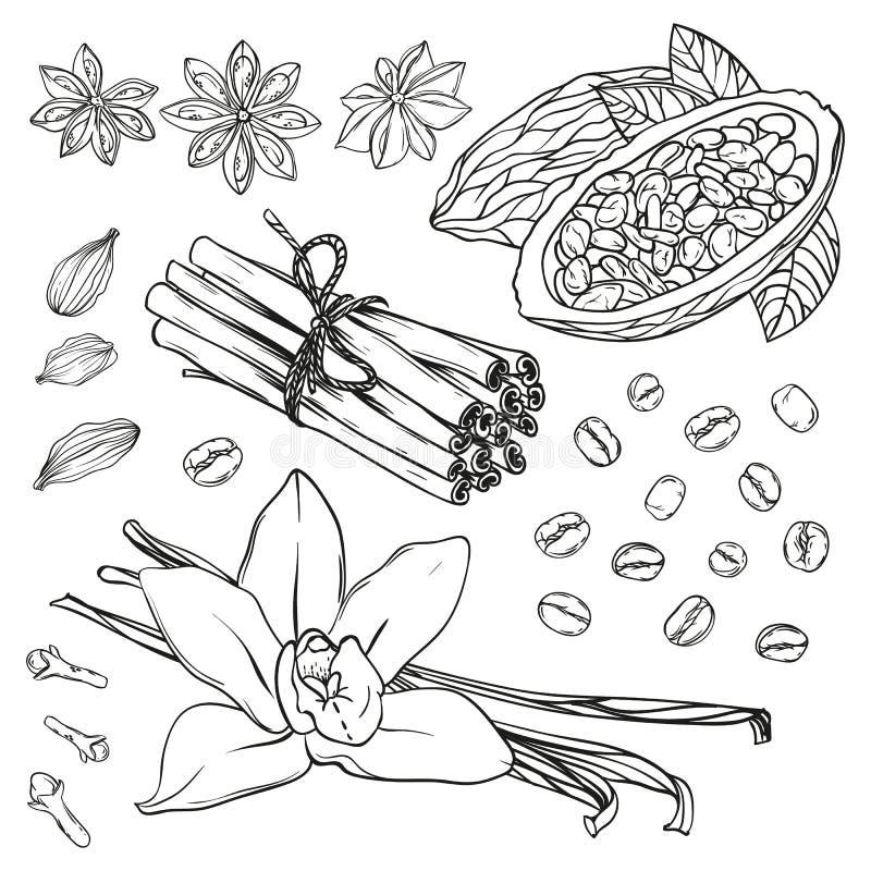 Reeks keukenkruiden Vanille, kaneel, kruidnagels, steranijsplant, cacaoboon, koffiebonen en kardemom stock illustratie