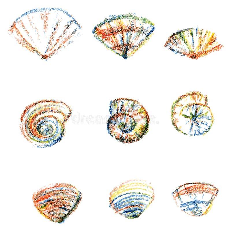 Reeks kleurenzeeschelpen op witte achtergrond vector illustratie